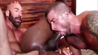 Hard 3some Bulls Fuck