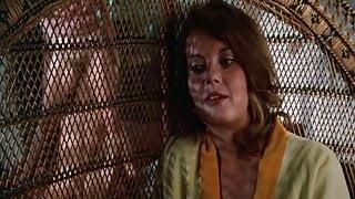 Candy Lips (1976, US, Gloria Leonard, full movie, DVD rip)