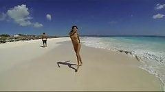 Trébol en la playa