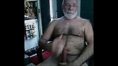 Guapo oso plateado masturbándose