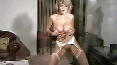 What the window cleaner saw - vintage 80's big tits strip