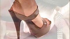 A Lady's Nylon Feet Dream