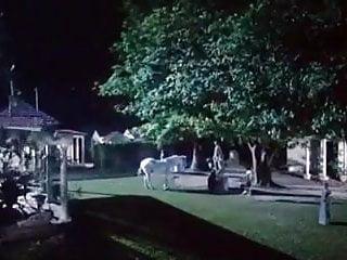 Sex sirens of hollywood - Sirens 1993 sex scene