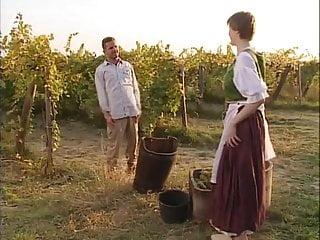 Wicked bottom vineyards - Darling assfucked in the vineyard