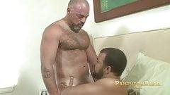 Bronson Gates and Roman Wright (BCB P1)