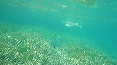 Подводные сиськи 3