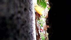 Srilankan garls bath
