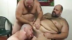 Tres gordito caliente