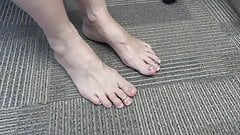 Sockshunter 22