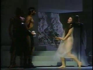 Vintage opera coat Catherine malfitano opera singer