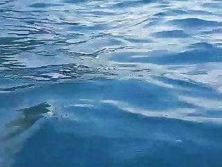 Sex shop southend on sea Turkish girl on sea