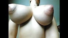 Saucer Nips 4