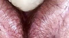 Horny bbw