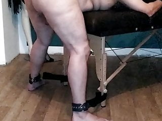 Mares having sex with men I offer my gay mare to fuck
