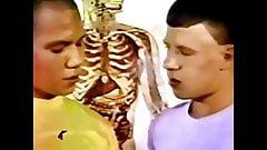 Kyd stuff (1978) część 6 lekcja anatomii