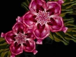 Darcy flowers nude Flowering nude girls