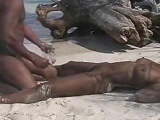 Amature fucks dog - Amature ebony beach fuck