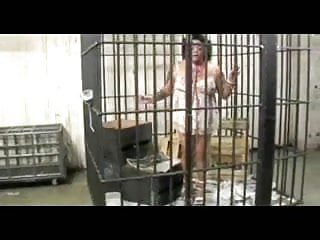 Torrent gerbil pussy 2 - Caged fat gerbil woman