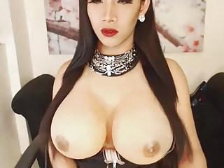 Frr shemale webcam - Big tits shemale masturbates on cam