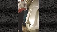 Папочки путешествуют в туалете 2