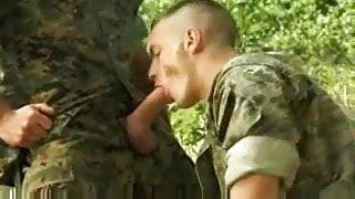 army studs