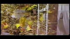 Ilha 1997 C