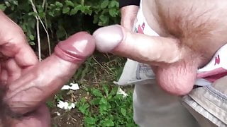 Amateur Hard cocks collection