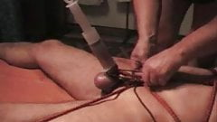 ball torture and video Cock