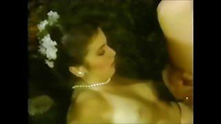 Amanda Jane Adams, Steve Drake