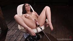 Kimber Woods Successfully Converted To Machine Sexing