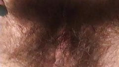 growing out hairy bush