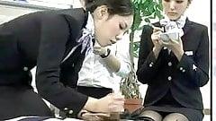 Японская стюардесса демонстрирует надлежащие процедуры для cpr