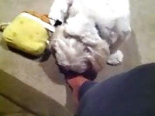 Fetish fair toronto Fille qui aiment se faire lecher les pieds