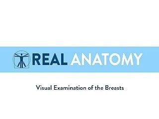 Female anatomy nude women line up Real female anatomy tutorial 2