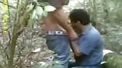 cruising...horny forest