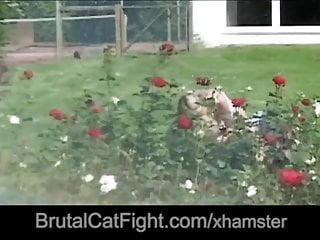 Vaginal intrusion - Cheated blonde spanks hard the intrusive slut