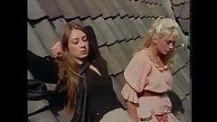 Vintage Hot Sex 211