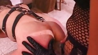 Une maitresse et son soumis