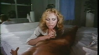 The Love-In Arrangement (1981, US, 35mm, full movie, DVD)