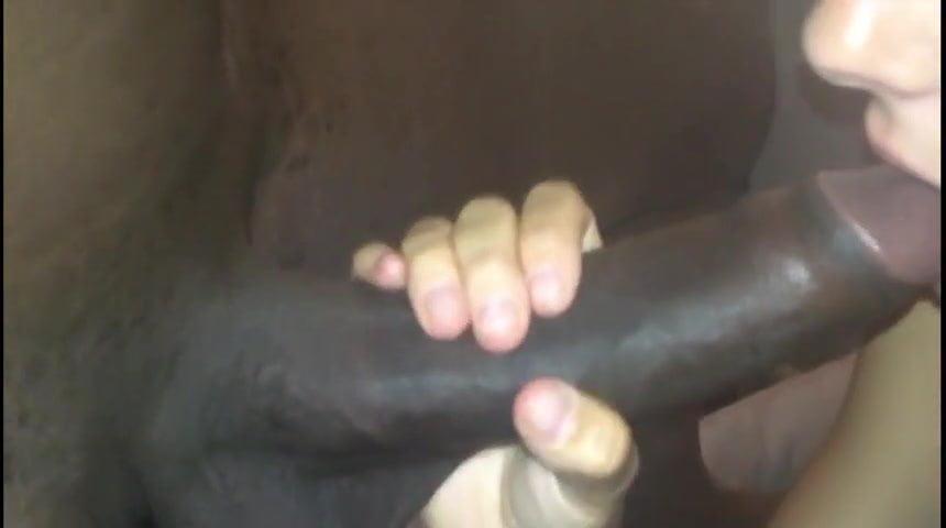 Black Girls Sucking White Cock
