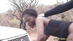 African safari sex