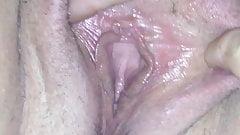 Le grandi e lunghe labbra della figa della moglie
