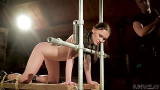Tied up slave gets humiliated in bdsm sex
