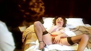 Les soirees d une epouse pervertie (1980)
