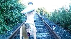 Eisenbahn Fick