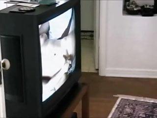 Jennifer korbin masturbates video Jennifer avalon kristina black - paiges xmas fantasy