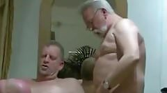 Three mature men sucking each other