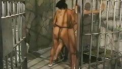 Prison - Strapon