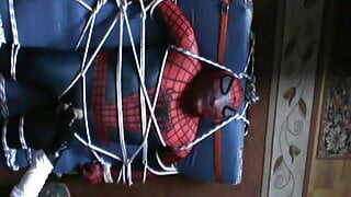Spiderman gets an enjoying
