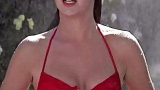 Phoebe Cates Iconic Topless Enhanced Scene